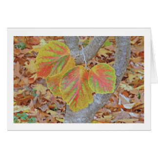 """FALL LEAVES"" (LIME GREEN, RED AND LEMON YELLOW) CARD"
