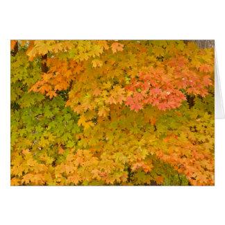 FALL LEAVES /LIME GREEN/TANGERINE/LEMON&MARIGOLD GREETING CARDS