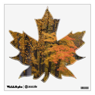 Fall Leaves Maple Leaf Wall Decal