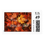 fall leaves, Missy & Eric October 20, 2007 Postage Stamp