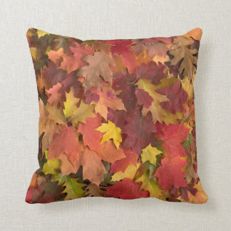 Fall Leaves Mixed Colors Pillow