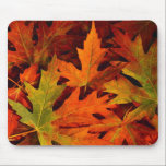 """fall leaves mouse pad<br><div class=""""desc"""">fall leaves mouse pad</div>"""