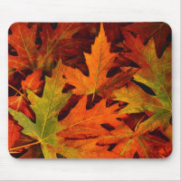 fall leaves mouse pad