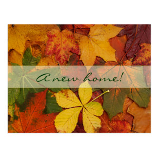 Fall Leaves-New Home Postcard