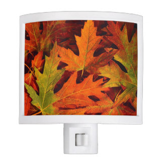 Fall leaves night light