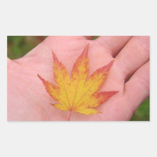 Fall leaves on hand rectangular sticker
