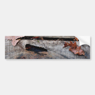 Fall Leaves on Old Wood Car Bumper Sticker