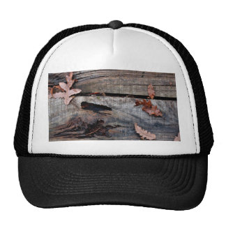 Fall Leaves on Old Wood Trucker Hat