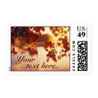 Fall Leaves on Pond Postage Stamp