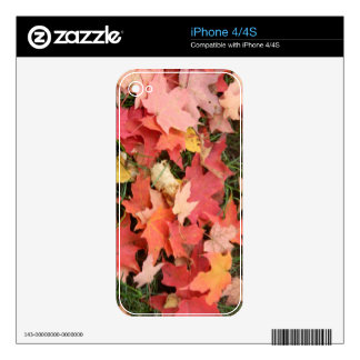 Fall Leaves on The Grass iPhone 4S Skins