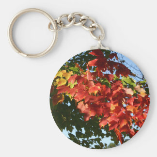 Fall Leaves Photo Keychain
