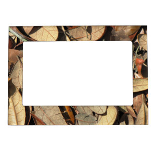 Fall leaves picture frame photo frame magnets