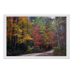 fall leaves posters