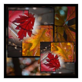 Fall Leaves Print