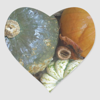 Fall leaves Pumpkins and Gourds Heart Sticker