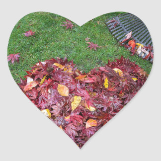 Fall Leaves Raked into Heart Shape on Green Grass Heart Sticker