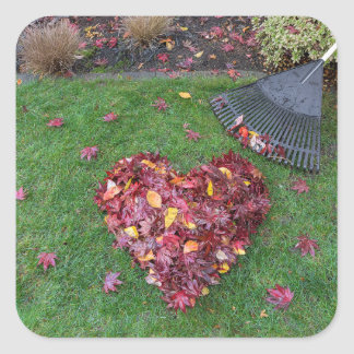 Fall Leaves Raked into Heart Shape on Green Grass Square Sticker