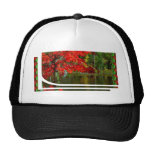 FALL Leaves Red Leaf n Jungle Show T-shirts Hats