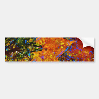 Fall leaves & reflection Fall leaf with Rocks in m Car Bumper Sticker