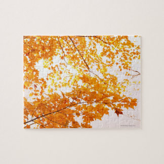 Fall Leaves Reflection Jigsaw Puzzle