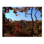 """Fall Leaves Scene"" Postcards"