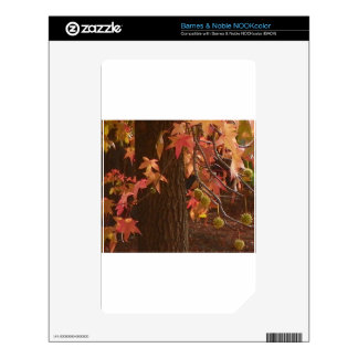 fall leaves NOOK color decal