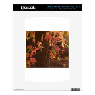 fall leaves skin for the NOOK