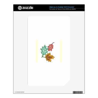 FALL LEAVES SKINS FOR NOOK COLOR