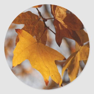 Fall Leaves Stickers