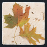 """Fall Leaves Stone Coaster<br><div class=""""desc"""">Beautiful graphic stone coaster,  with digital enhanced photos of green,  orange and yellow Fall leaves. Chose the stone style you prefer and customize to add your own text.  Stylish gift idea for anyone.</div>"""