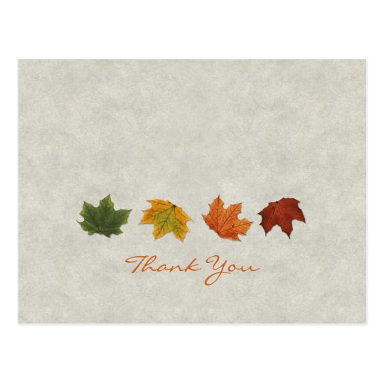 Fall Leaves Thank You postcard