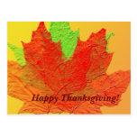 Fall leaves Thanksgiving Postcard