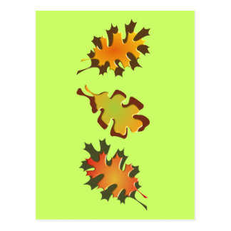 Fall Leaves Three Autumn Design Post Cards