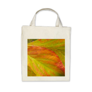 Fall Leaves Tote Tote Bag