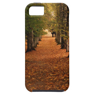 Fall Leaves & Trees iPhone 5 Cover