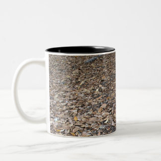 fall leaves Two-Tone coffee mug
