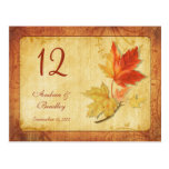 Fall Leaves Wedding Table Number Card Postcard