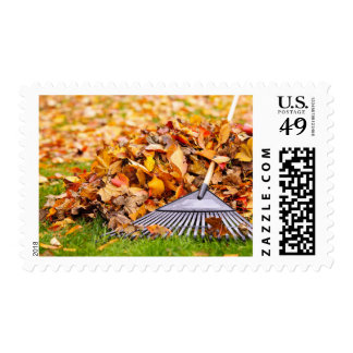 Fall Leaves With Rake Postage Stamp