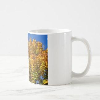 Fall Maple and Blue Sky - Photograph Coffee Mug