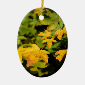 Fall maple leaves ceramic ornament