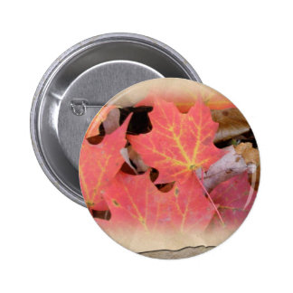 Fall Maple Leaves Coordinating Items 2 Inch Round Button