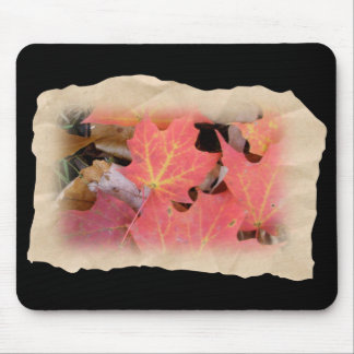 Fall Maple Leaves Coordinating Items Mouse Pad