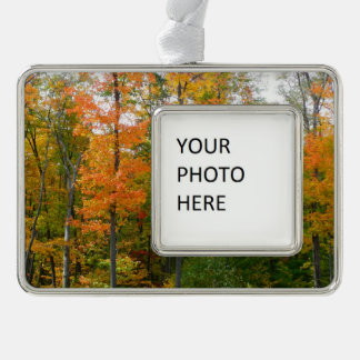 Fall Maple Trees Autumn Nature Photography Christmas Ornament