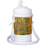 Fall Maple Trees Autumn Nature Photography Cooler