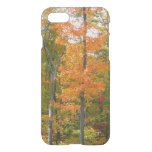 Fall Maple Trees Autumn Nature Photography iPhone 8/7 Case