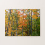 Fall Maple Trees Autumn Nature Photography Jigsaw Puzzle