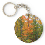 Fall Maple Trees Autumn Nature Photography Keychain