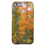 Fall Maple Trees Autumn Nature Photography Tough iPhone 6 Case