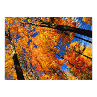 Fall maple trees personalized invitations