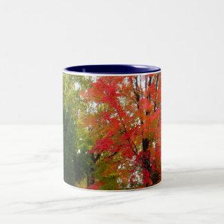 Fall Mardigras Two-Tone Coffee Mug